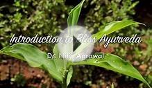 Introduction to Bliss Ayurveda