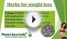 Weight Loss Herbs & Remedies, Obesity Herbs & Ayurvedic